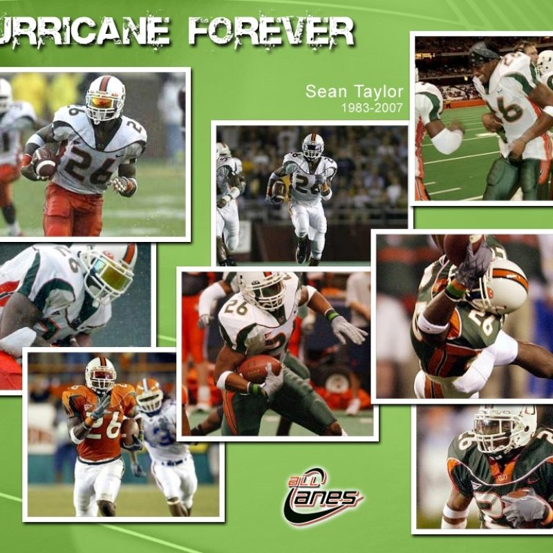 10 Top Miami Hurricane Football Wallpaper FULL HD 1080p For PC Background 2021 free download allcanes 1 canes shop since 1959 800x800