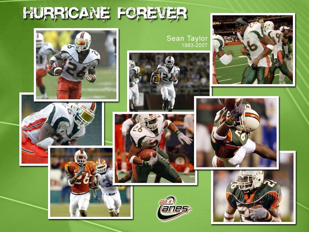 Image Details Source Allcanes Title 1 Canes Shop Since 1959 Dimension 1024 X 768 File Type JPG JPEG 10 Top Miami Hurricane