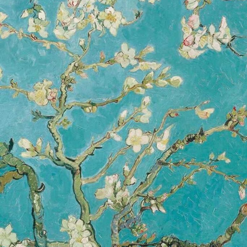10 New Van Gogh Almond Blossoms Wallpaper FULL HD 1920×1080 For PC Background 2020 free download almond blossom wallpaper iphone wallpaper pinterest almonds 800x800
