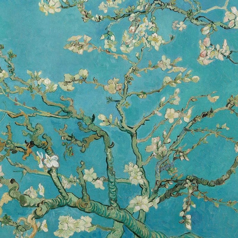 10 New Van Gogh Almond Blossoms Wallpaper FULL HD 1920×1080 For PC Background 2020 free download almond branchesvan gogh wall mural muralswallpaper co uk 800x800