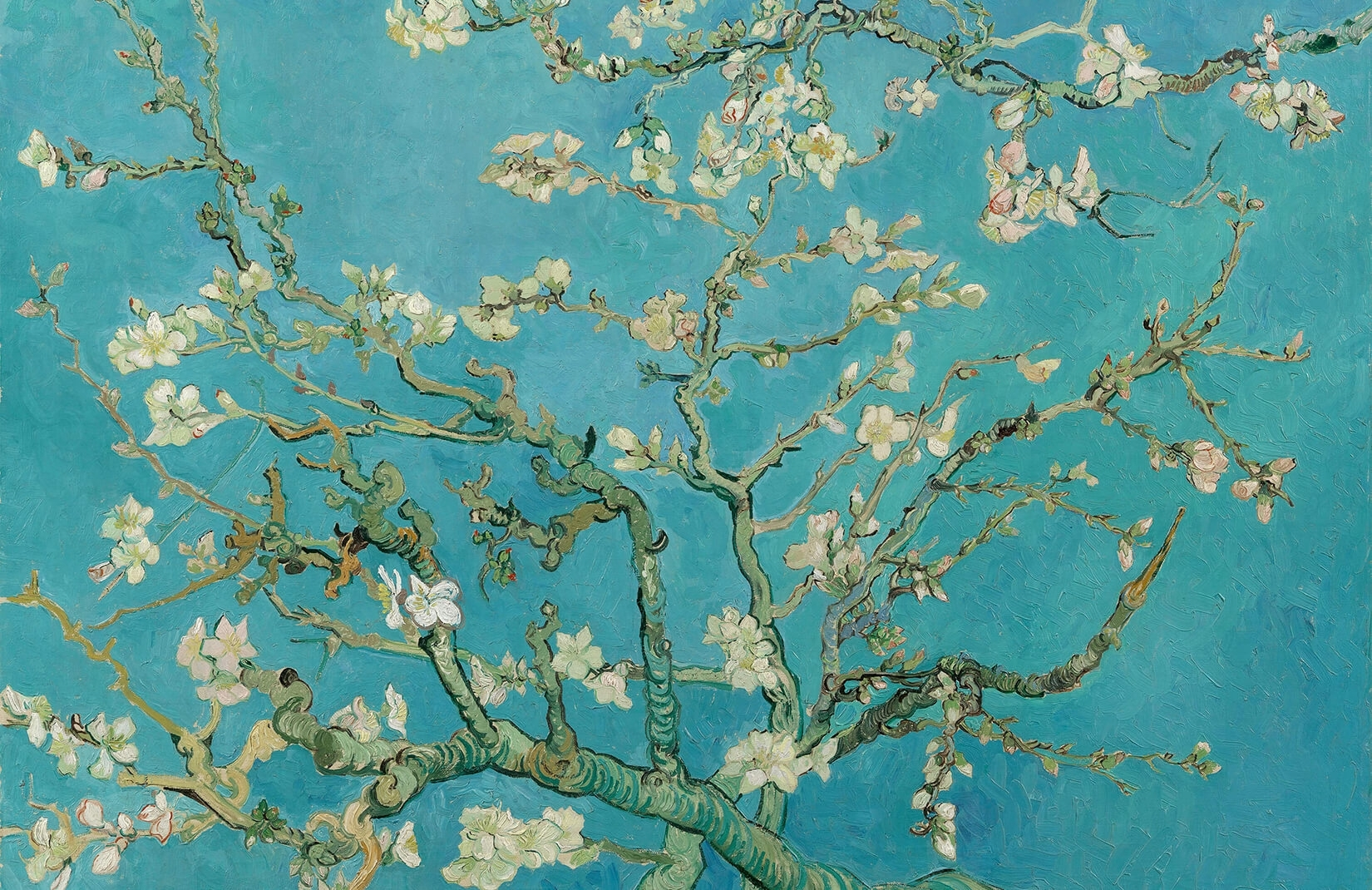 almond branchesvan gogh wall mural | muralswallpaper.co.uk