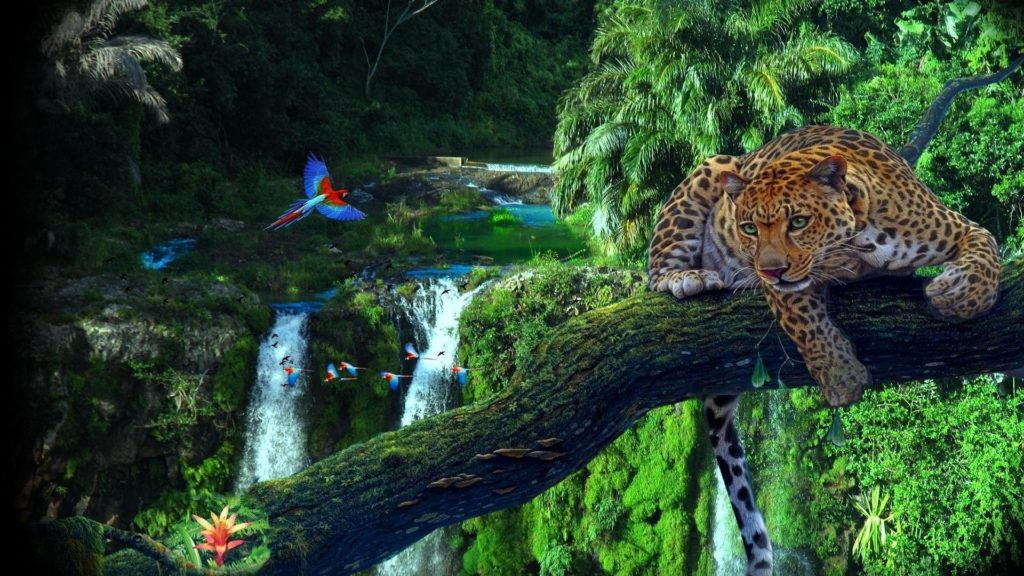 10 Latest Amazon Rainforest Wallpaper Hd FULL HD 1080p For PC Desktop 2020 free download amazon rainforest wallpaper wallpaper studio 10 tens of 1024x576