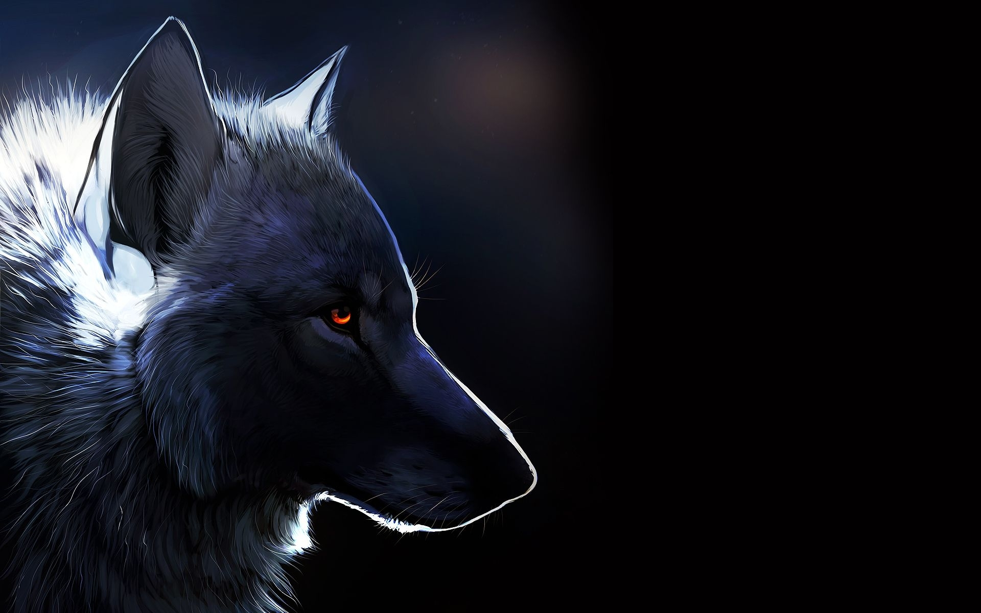amber eyes, #wolf, #black background | stuff i like | pinterest