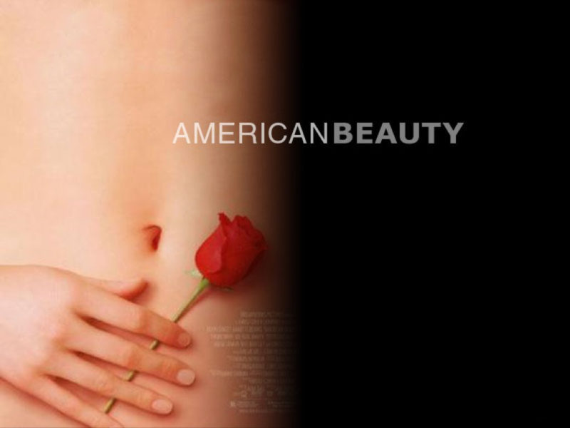10 New American Beauty Wallpaper FULL HD 1920×1080 For PC Desktop 2018 free download american beauty bilder american beauty hd hintergrund and background 800x600