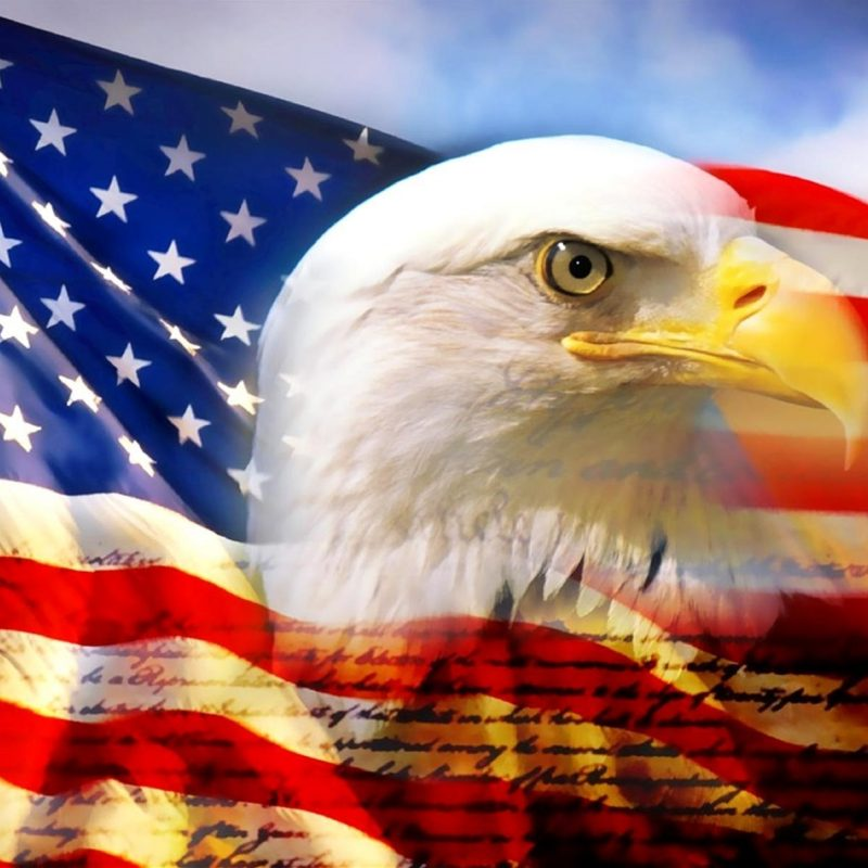 10 Latest American Flag Eagle Background FULL HD 1080p For PC Desktop 2021 free download american eagle and flag pictures dowload 800x800