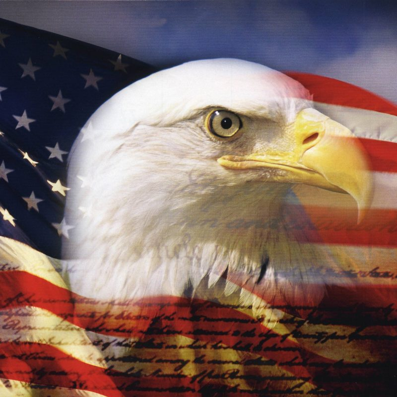 10 Top Eagle And Flag Wallpaper FULL HD 1080p For PC Desktop 2018 free download american eagle wallpaper hd yodobi 800x800