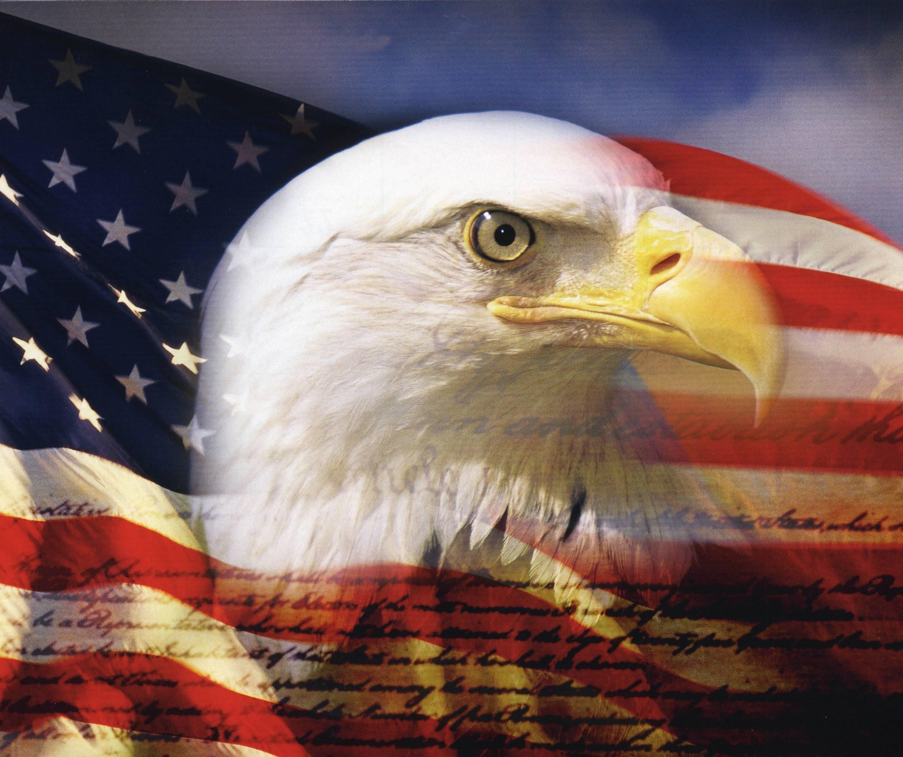 american eagle wallpaper hd > yodobi