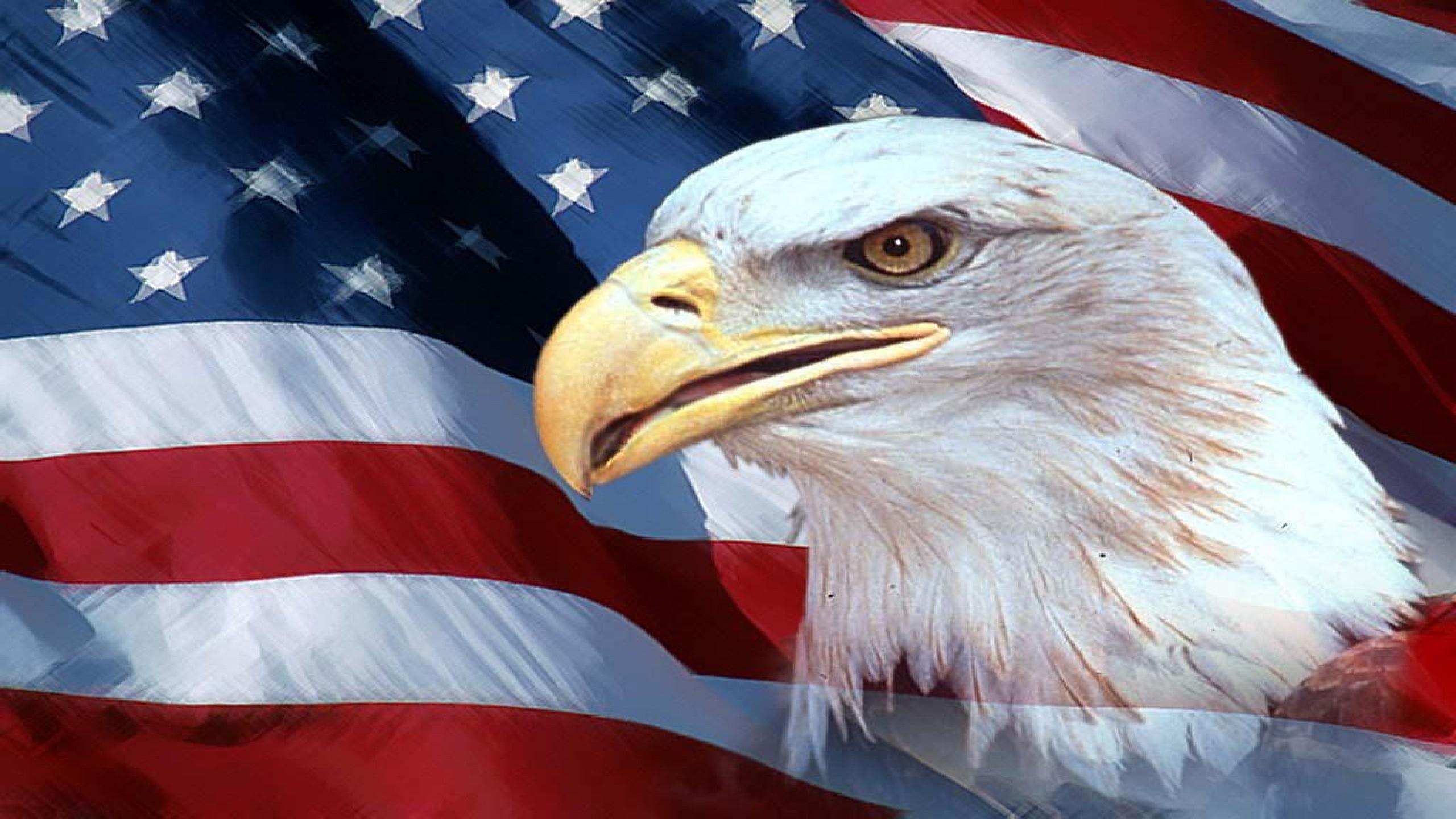 american flag and eagle hd desktop wallpaper, instagram photo