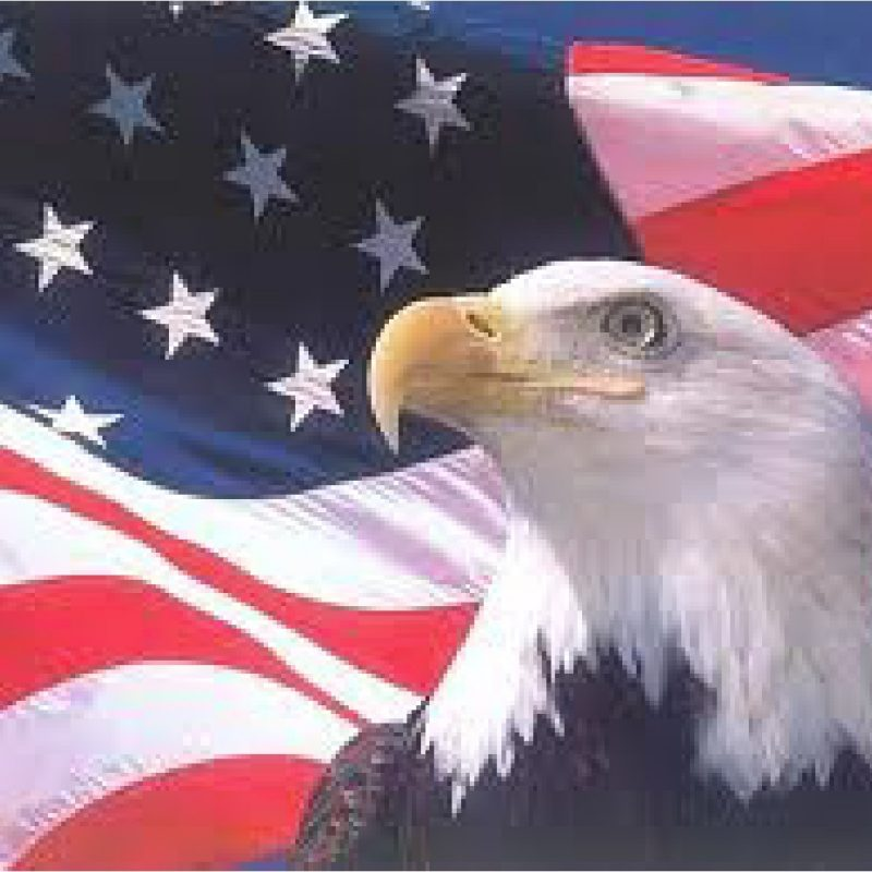 10 Latest American Flag Eagle Background FULL HD 1080p For PC Desktop 2021 free download american flag background with eagle 13 background check all 800x800