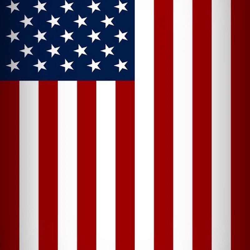 10 Latest American Flag Wallpaper Iphone FULL HD 1080p For PC Background 2020 free download american flag wallpaper iphone 6 62 xshyfc 800x800