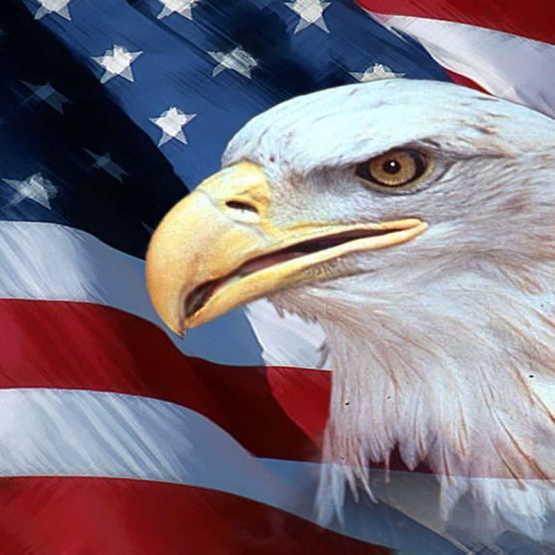 10 Top Eagle And Flag Wallpaper FULL HD 1080p For PC Desktop 2018 free download american flag with eagle wallpaper 70 images 1 800x800