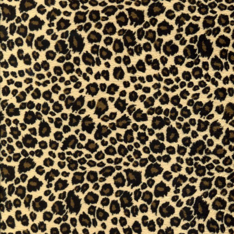 10 Top Leopard Print Wallpaper Hd FULL HD 1920×1080 For PC Background 2020 free download animal print desktop wallpaper background wallpaper 800x800