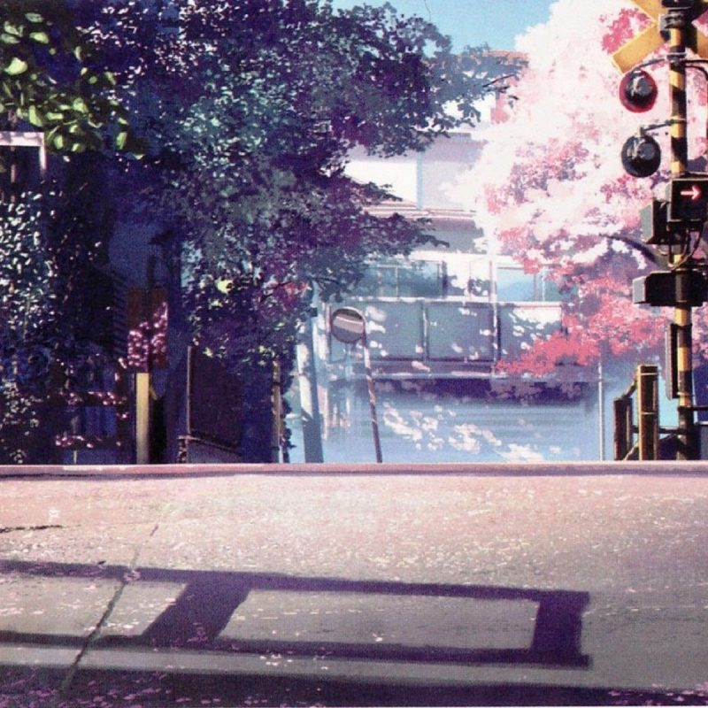 10 Most Popular Anime Cherry Blossom Wallpaper FULL HD 1080p For PC Background 2018 free download anime scenery wallpaper emotional atmospheric scenes pinterest 800x800