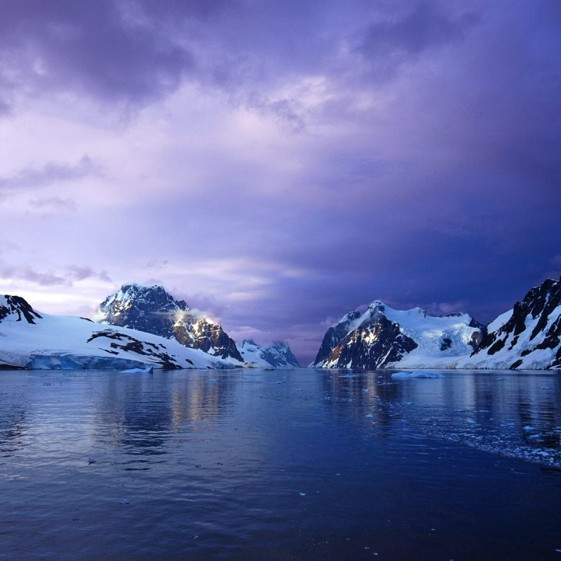 10 Latest Antarctica At Night Wallpaper FULL HD 1080p For PC Background 2020 free download antarctica high definition desktop wallpaper hd wallpapers 800x800