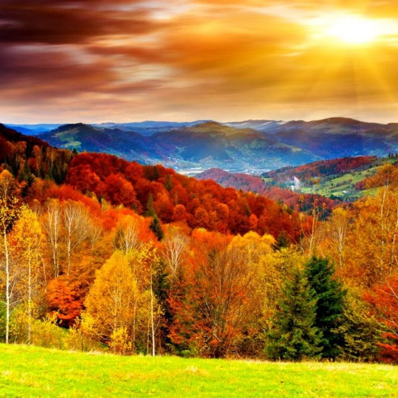10 Best Free Computer Backgrounds For Fall FULL HD 1080p For PC Desktop 2018 free download autumn desktop wallpaper wallpapers browse 800x800