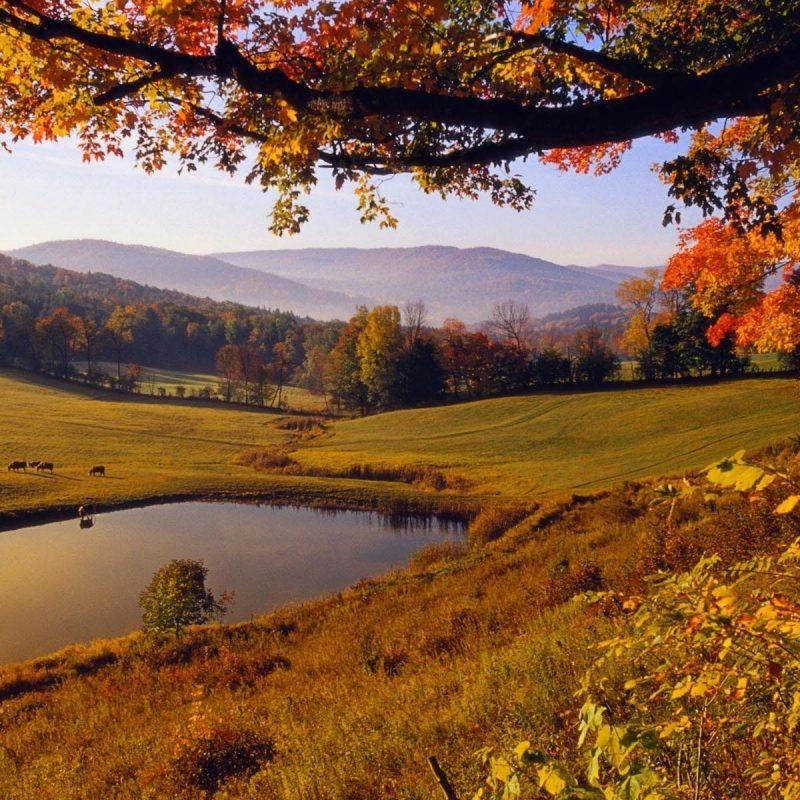 10 New Autumn Landscape Wallpaper Hd FULL HD 1080p For PC Background 2018 free download autumn landscape autumn landscape wallpaper 1920x1200 575 kb l 800x800
