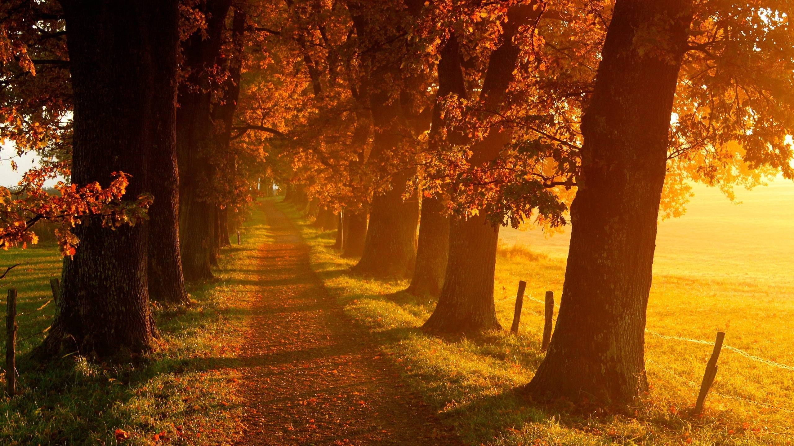 autumn landscape wallpapers - wallpaper cave