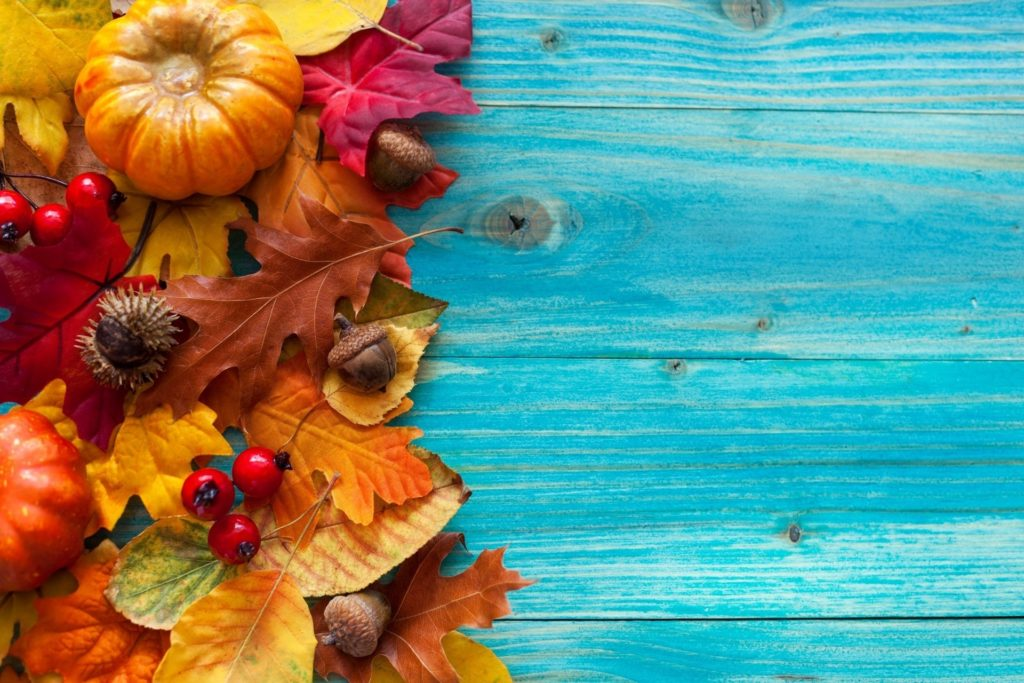10 Latest Fall Wallpaper With Pumpkins FULL HD 1920×1080 For PC Background 2018 free download autumn leaves tree vintage acorns berries pumpkin hd wallpaper 1024x683