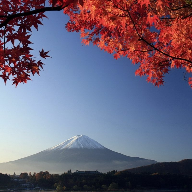 10 New Mount Fuji Hd Wallpaper FULL HD 1080p For PC Desktop 2018 free download autumn mount fuji japan e29da4 4k hd desktop wallpaper for 4k ultra hd 800x800