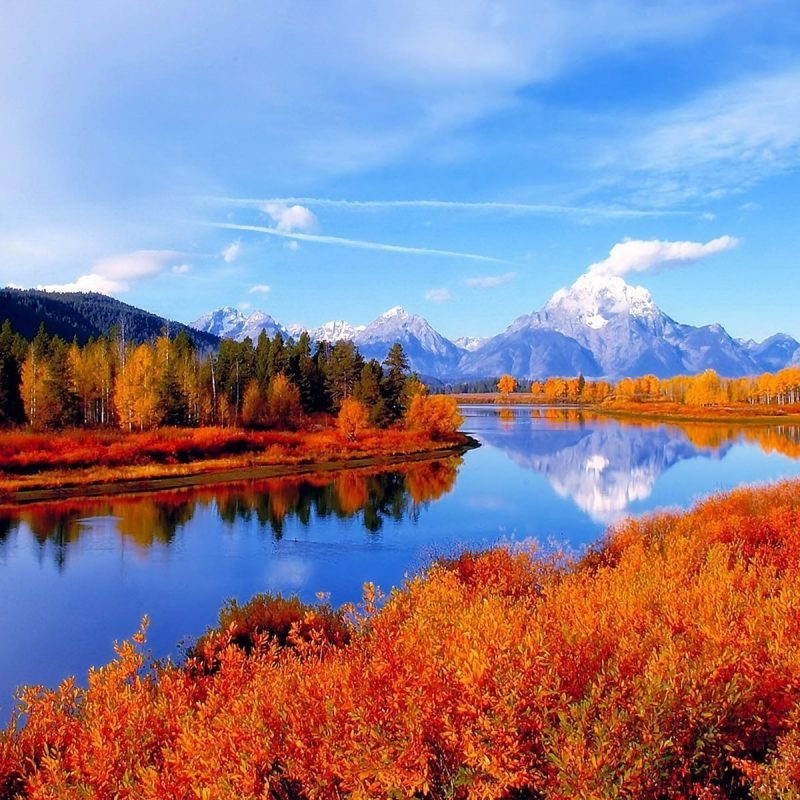 10 New Fall Scene Desktop Background FULL HD 1080p For PC Background 2018 free download autumn scene background hd backgrounds pic 800x800