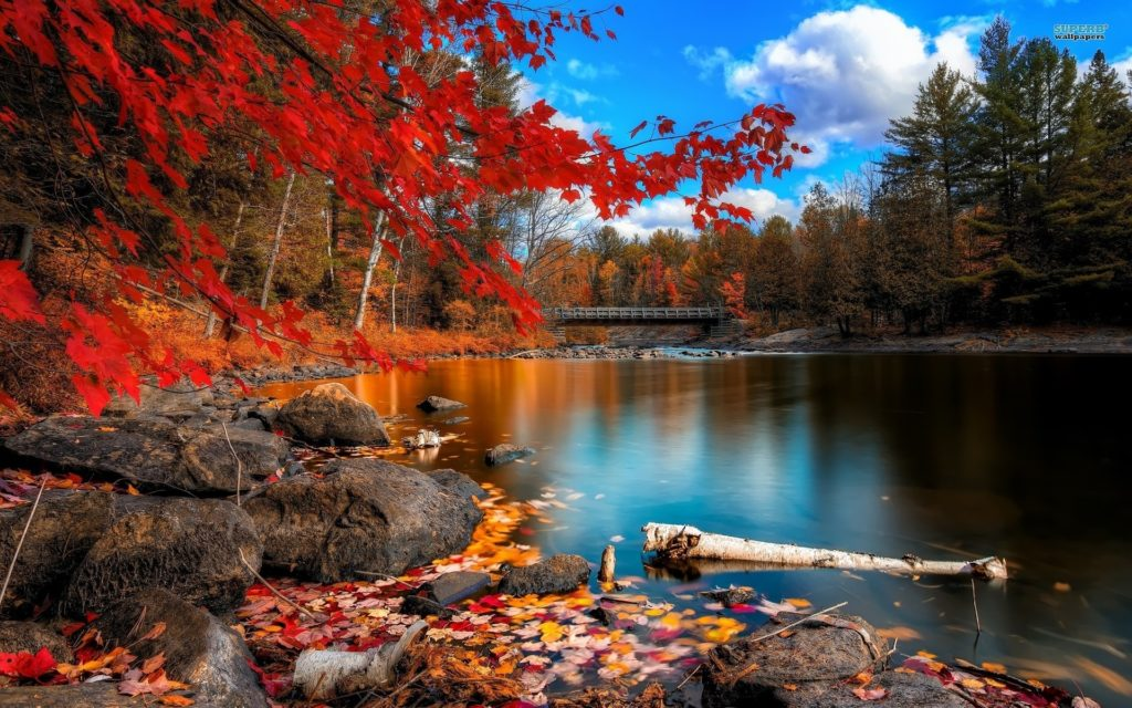 10 Best Autumn Images For Desktop FULL HD 1080p For PC Background 2018 free download autumn wallpapers for desktop diariovea 1024x640