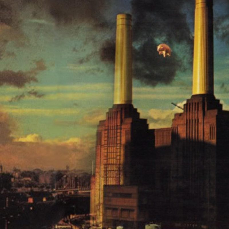 10 Top Pink Floyd Animals Wallpaper Hd FULL HD 1920×1080 For PC Desktop 2018 free download awesome pink floyd animals iphone 5 wallpaper design anime 800x800