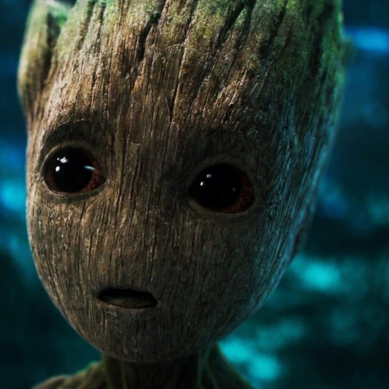 10 Top Baby Groot Desktop Background FULL HD 1920×1080 For PC Background 2018 free download baby groot wallpaper 11575 baltana 800x800