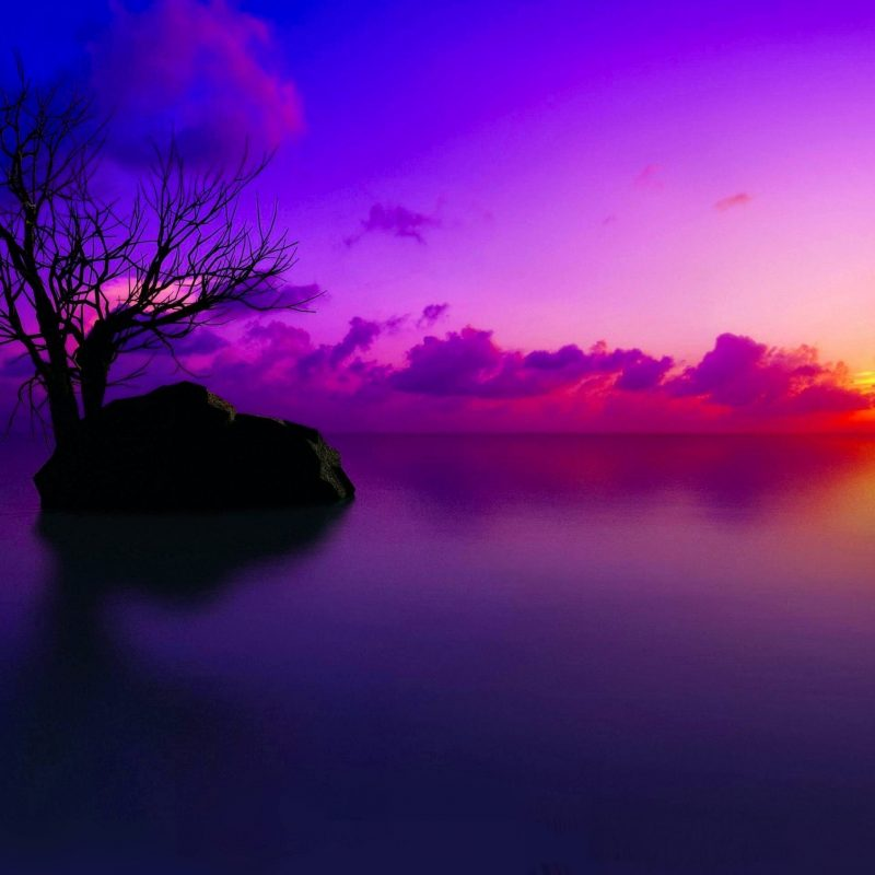 10 Most Popular Sunset Background 1920X1080 FULL HD 1920×1080 For PC Background 2020 free download backgrounds for sunset hd wallpaper widescreen high quality mobile 800x800