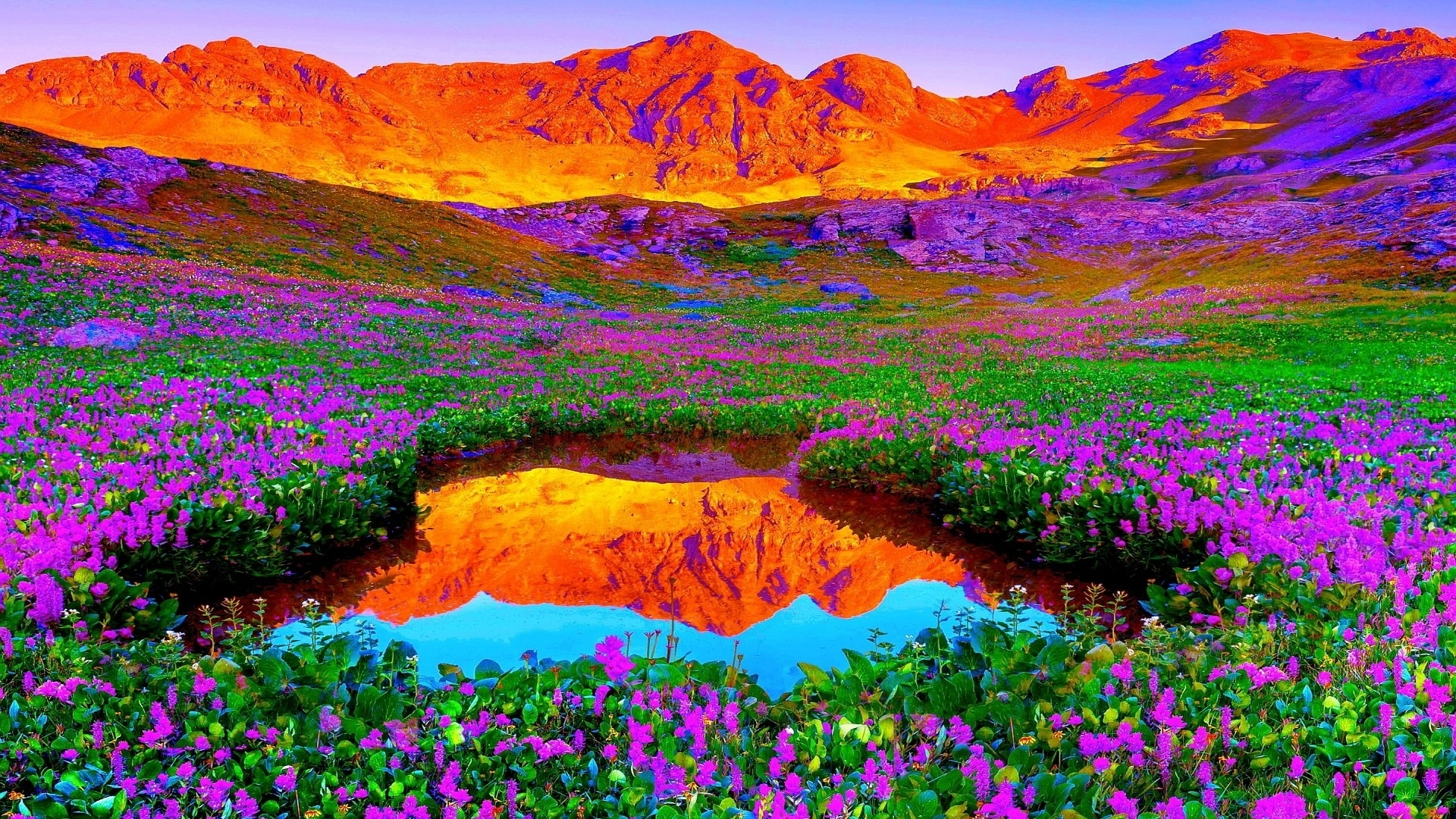 backgrounds nature hd background image images new with wallpaper