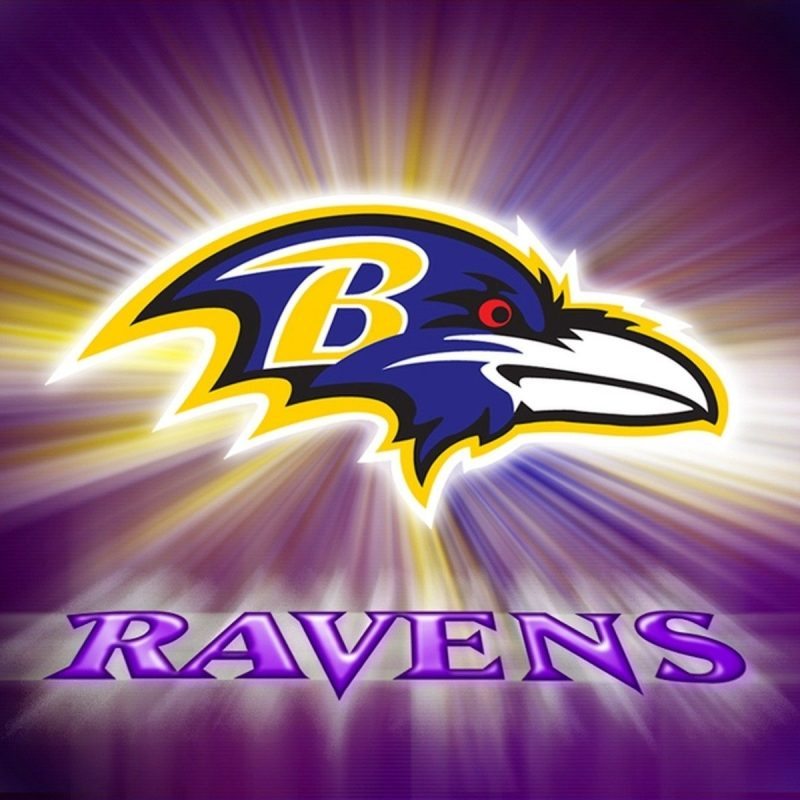 10 Top Baltimore Ravens Wallpapers Free FULL HD 1920×1080 For PC Background 2018 free download baltimore ravens wallpaper hd background baltimore ravens 800x800