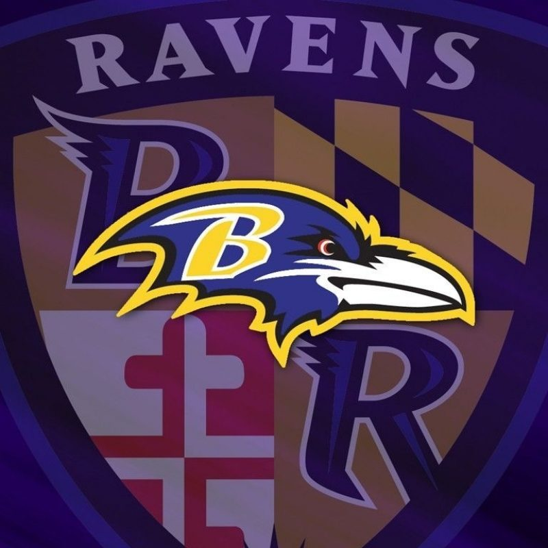 10 Top Baltimore Ravens Wallpapers Free FULL HD 1920×1080 For PC Background 2018 free download baltimore ravens wallpapers wallpaper cave awesome pinterest 800x800