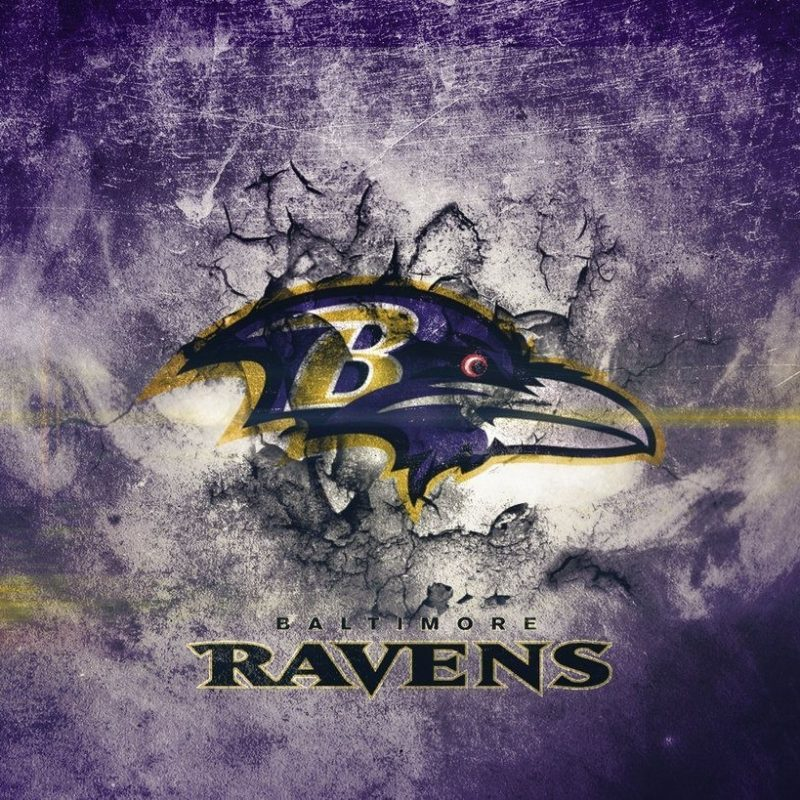 10 Top Baltimore Ravens Wallpapers Free FULL HD 1920×1080 For PC Background 2018 free download baltimore ravens wallpapers wallpaper cave baltimore ravens 800x800