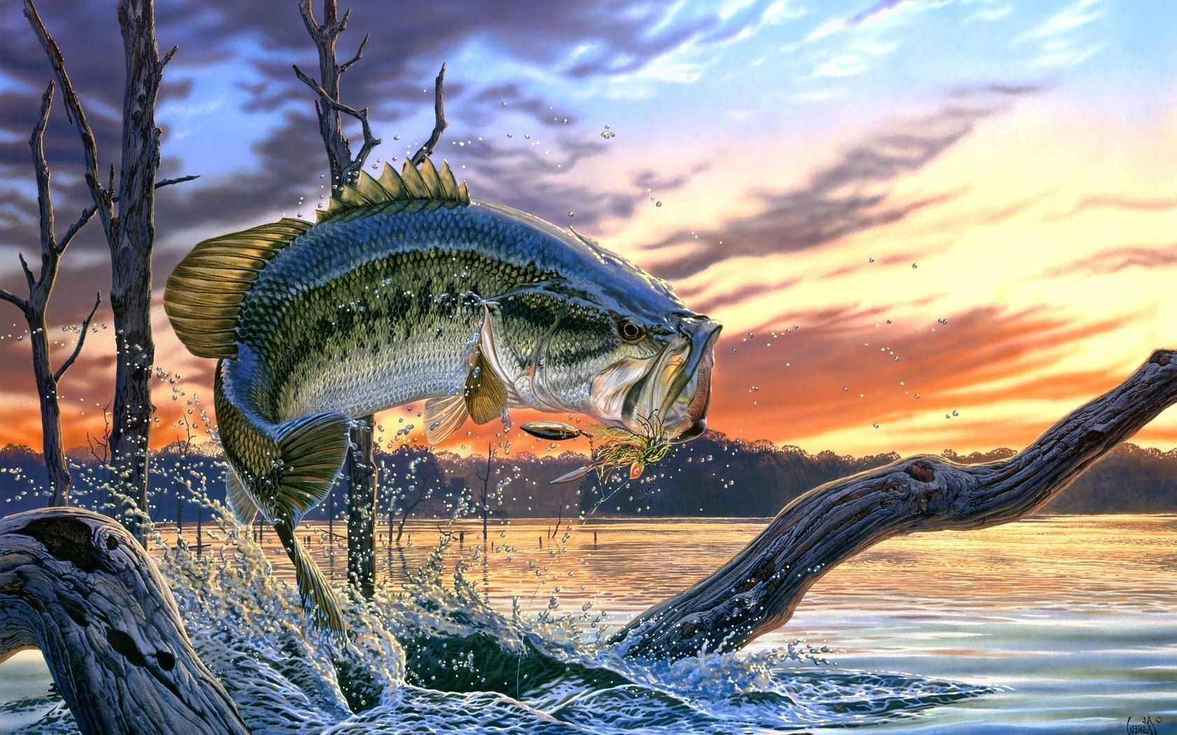 bass fishing   bass fishing wallpaper backgrounds wallpaper cave