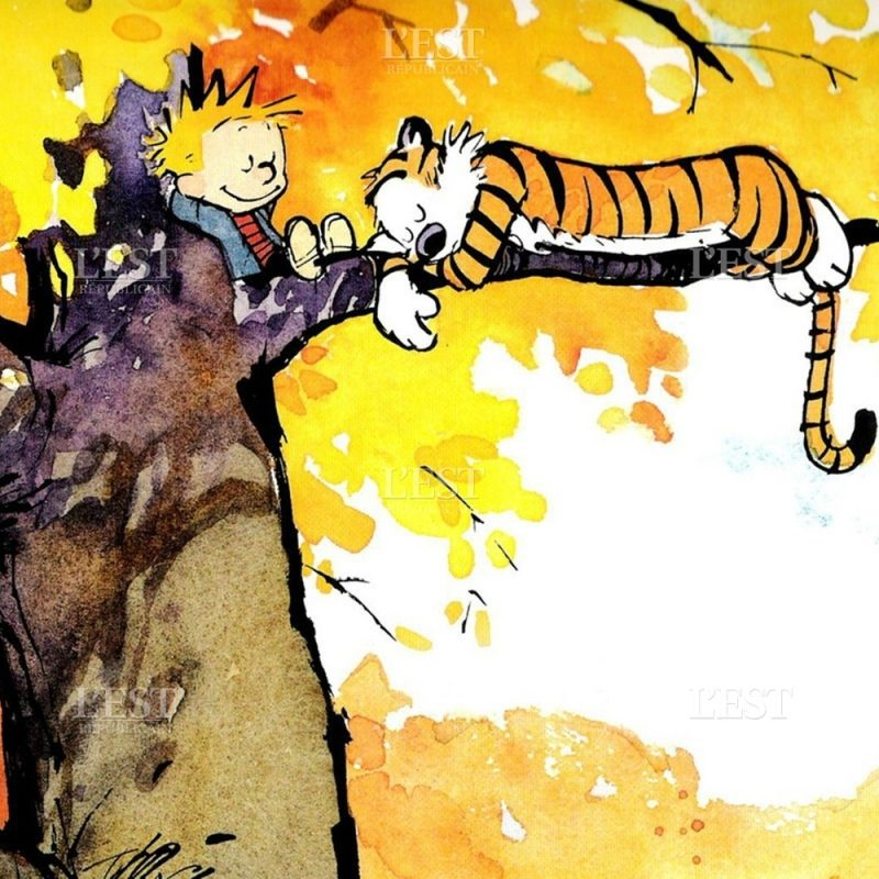 10 Best Calvin And Hobbes Hd Wallpaper FULL HD 1080p For PC Background 2018 free download bdcale chroniques calvin et hobbes le retour 800x800