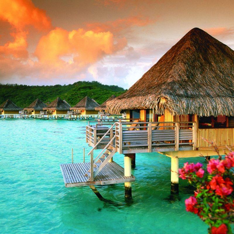 10 New Bora Bora Hd Wallpaper FULL HD 1920×1080 For PC Desktop 2018 free download beach hut st regis in bora bora full hd fond decran and arriere 800x800