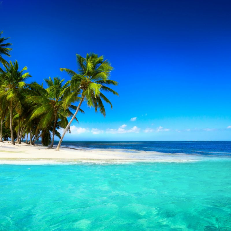 10 Best Tropical Island Wallpaper Hd FULL HD 1080p For PC Background 2020 free download beach paradise sea palms tropical island wallpaper desktop summer 800x800