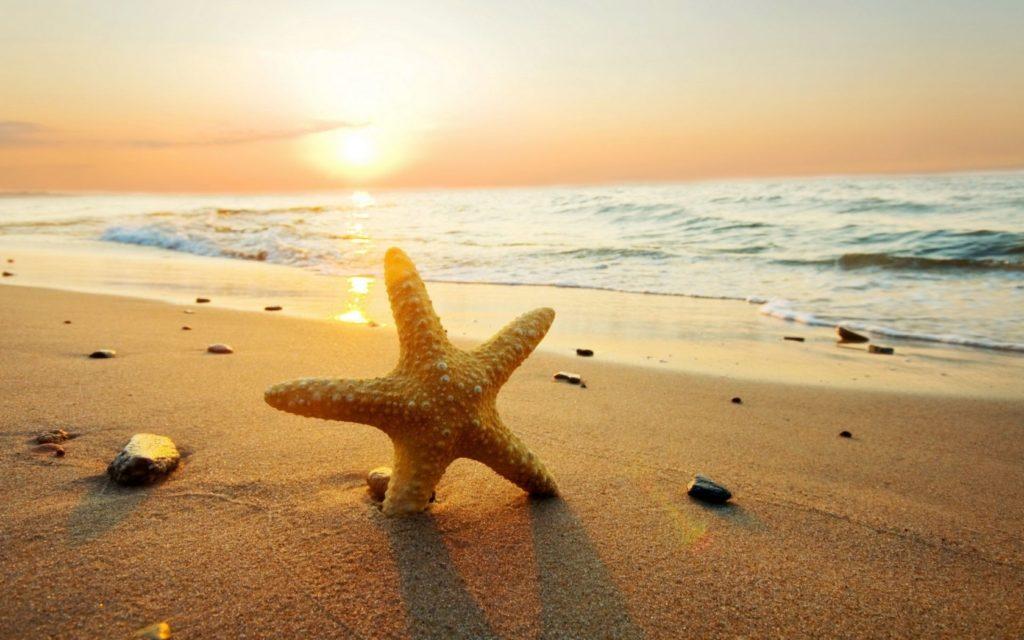 10 Latest Beautiful Beach Sunset Backgrounds FULL HD 1080p For PC Desktop 2018 free download beach sunset wallpaper 354 1024x640