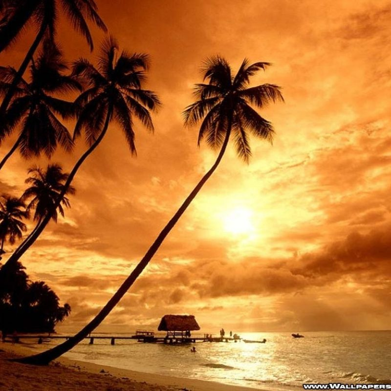 10 Latest Summer Beach Sunset Wallpaper FULL HD 1920×1080 For PC Desktop 2020 free download beach sunsets wallpapers wallpaper cave 800x800