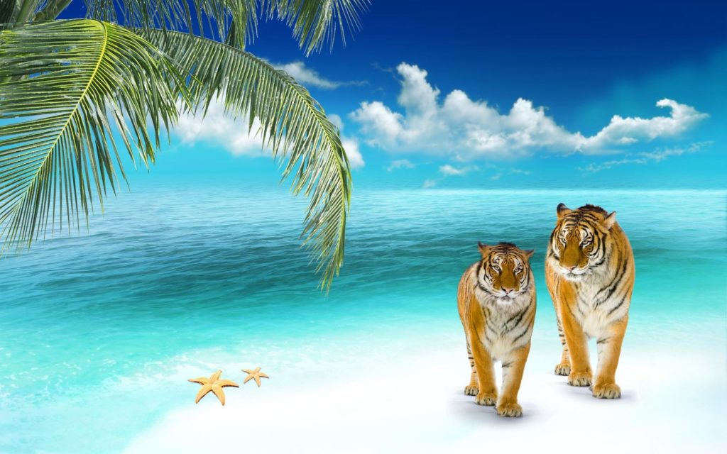 10 Latest 3D Beach Wallpaper Desktop FULL HD 1920×1080 For PC Background 2018 free download beach wallpapers tigers on a tropical beach wallpaper beaches 1024x640