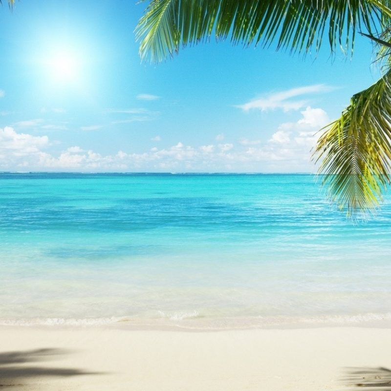 10 New Summer Beach Pictures For Desktop FULL HD 1920×1080 For PC Background 2018 free download beaches summer palms tree sun sand ocean beach wallpaper for 800x800