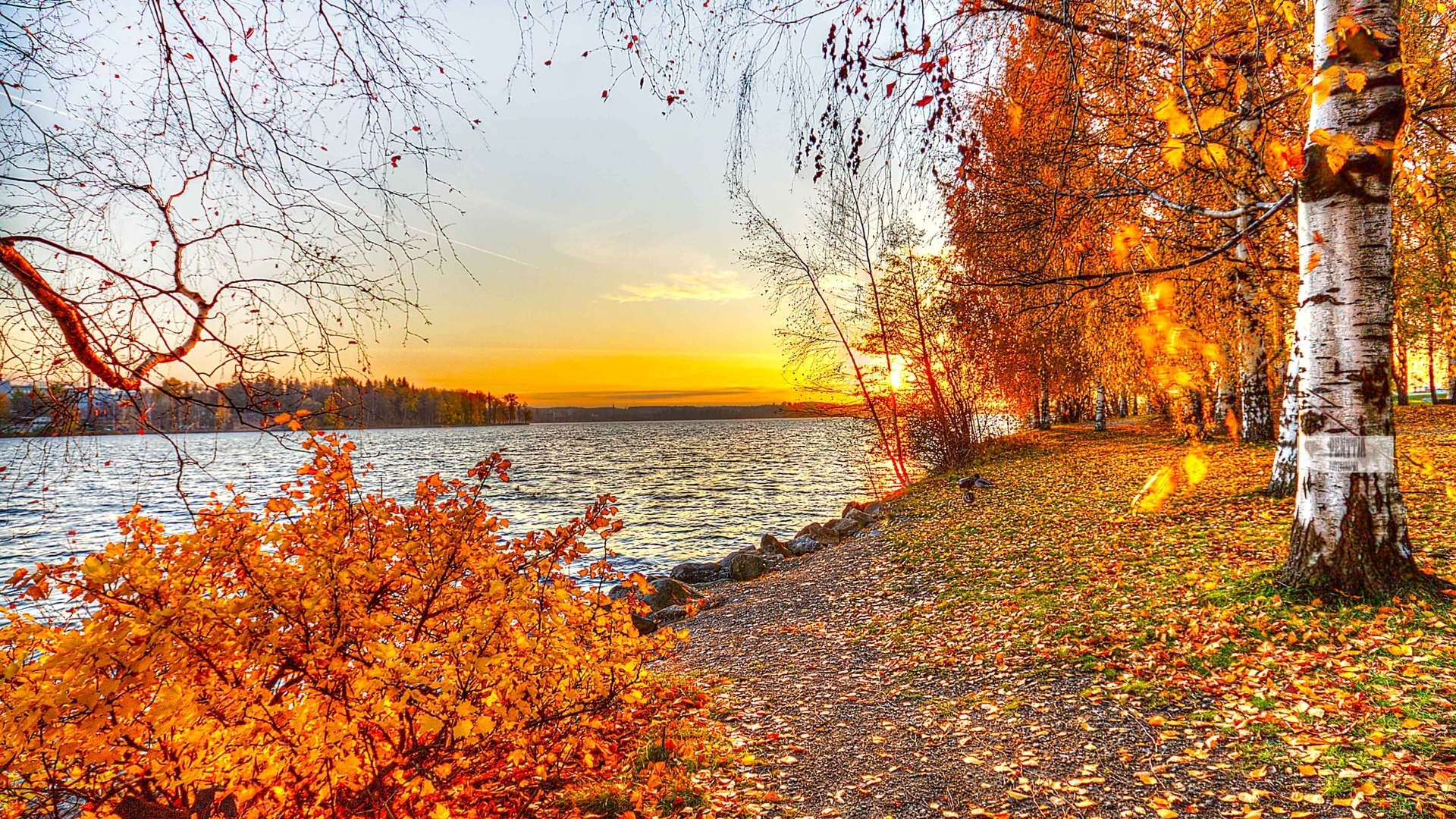 10 Best Beautiful Fall Pictures Wallpaper FULL HD 1080p For PC Desktop