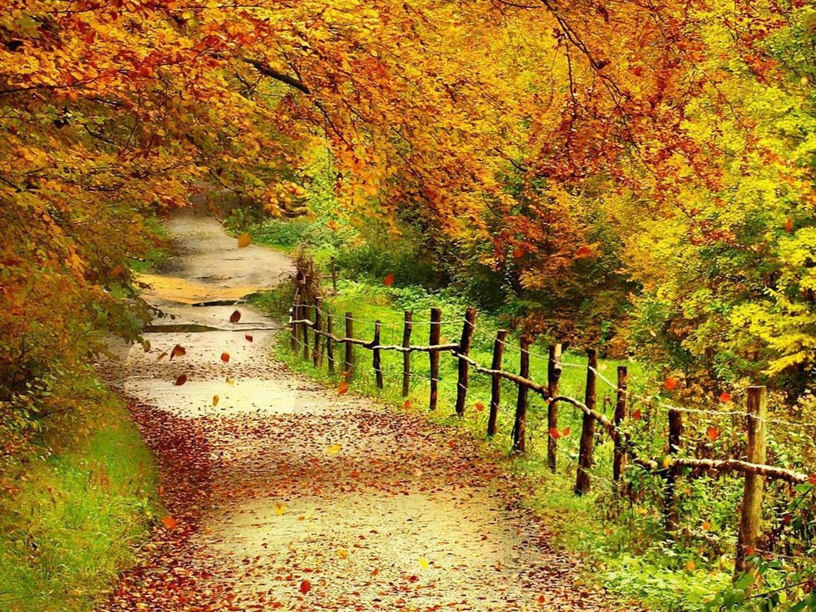 beautiful autumn scenery | tag: beautiful autumn scenery wallpapers