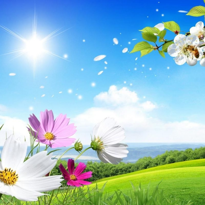 10 Best Spring Background Images Free FULL HD 1920×1080 For PC Desktop 2018 free download beautiful backgrounds wallpaper hd free download hd free 800x800
