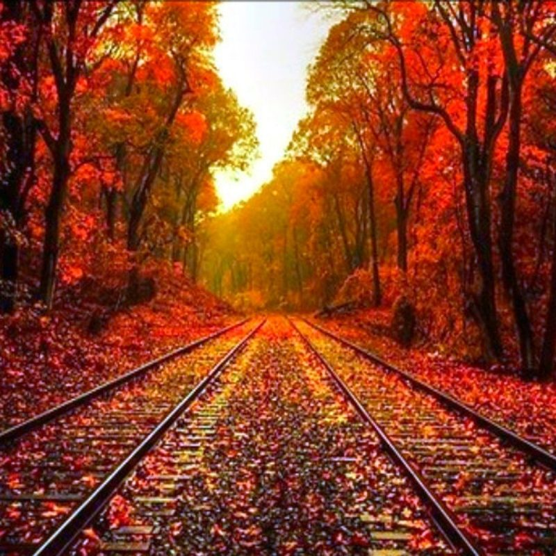 10 New Beautiful Autumn Wallpapers Desktop FULL HD 1920×1080 For PC Background 2018 free download beautiful fall pictures beautiful autumn wallpaper desktop 800x800