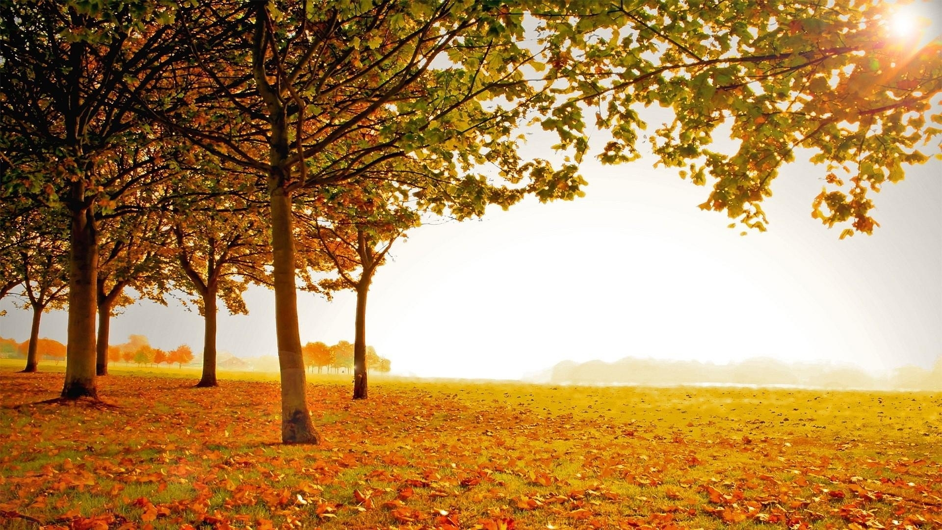 beautiful fall scenery wallpaper | (133904)