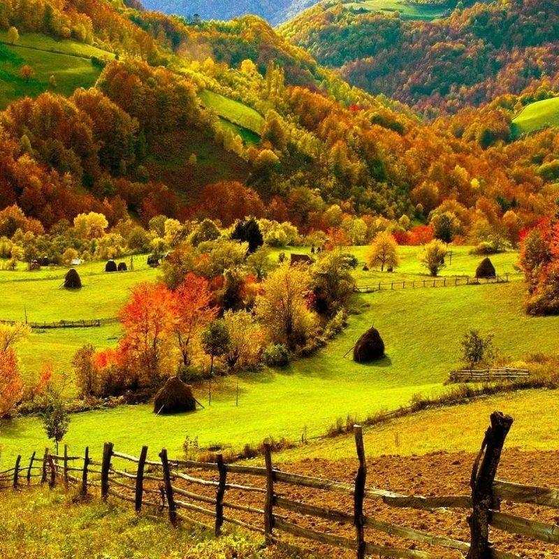 10 Top Fall Scenery Desktop Wallpapers FULL HD 1080p For PC Desktop 2018 free download beautiful fall scenery wallpaper 49 images 800x800