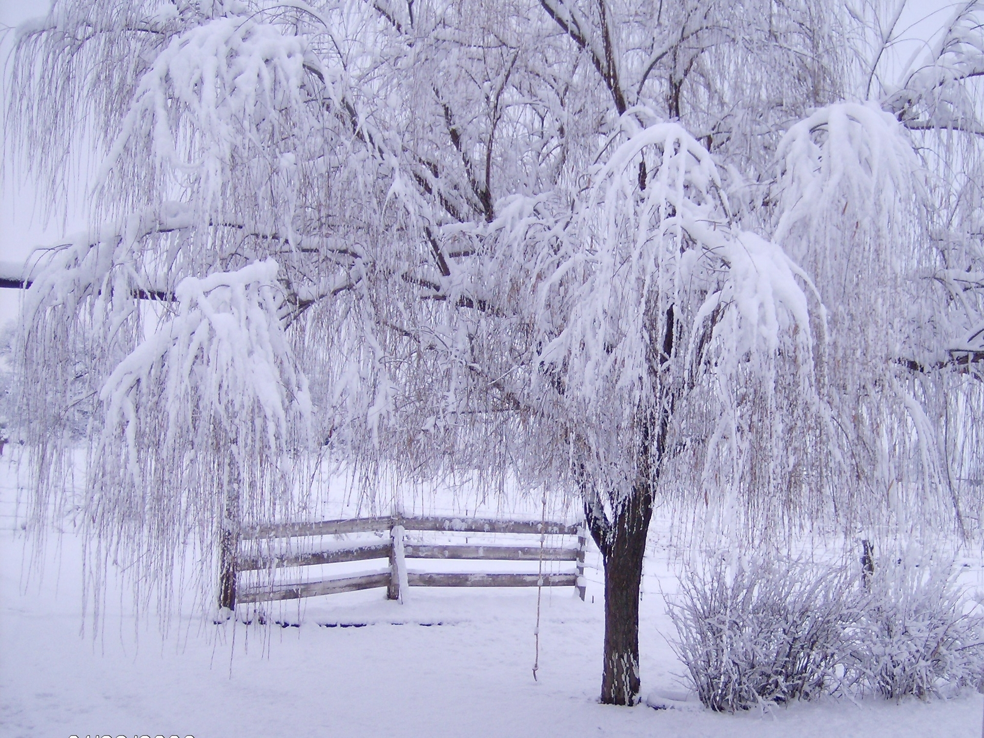 beautiful free winter wallpaper for desktop 8 - diariovea