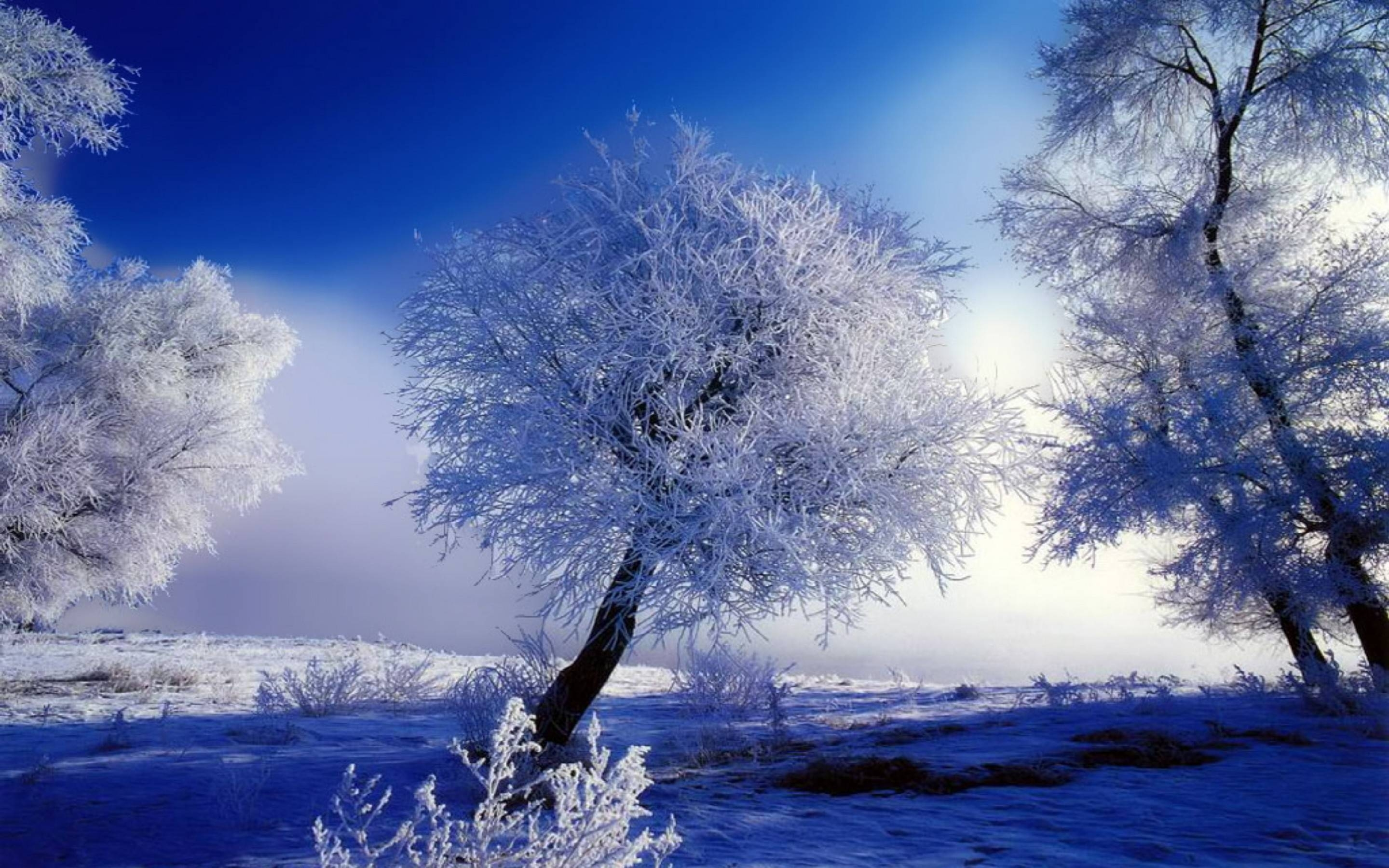 beautiful snow wallpapers - wallpaper cave
