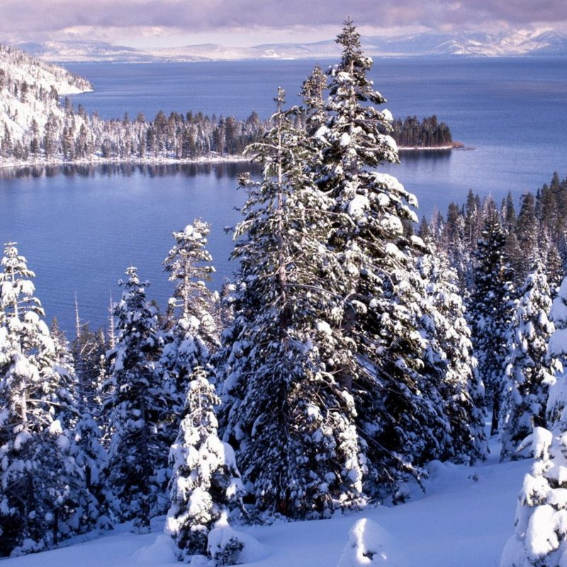 10 Most Popular Beautiful Winter Landscapes Wallpapers FULL HD 1080p For PC Desktop 2018 free download beautiful winter landscape white forest and cold water 800x800