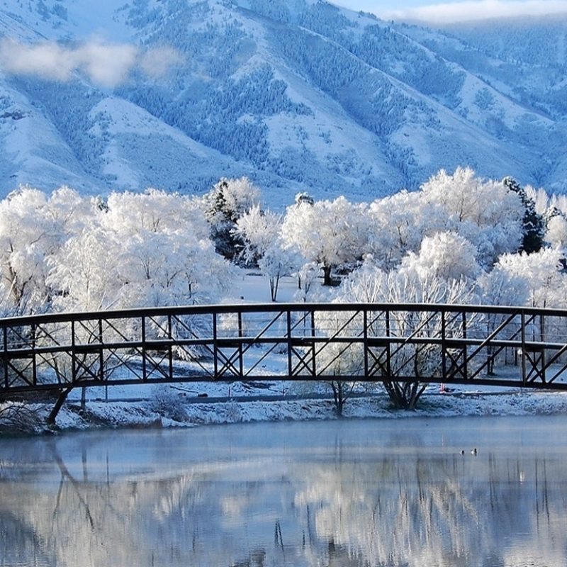 10 Top Winter Screensavers And Wallpapers FULL HD 1920×1080 For PC Desktop 2018 free download beautiful winter scene e29da4 4k hd desktop wallpaper for 4k ultra hd tv 2 800x800